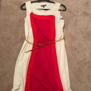 NEW! Dress Barn Dress
